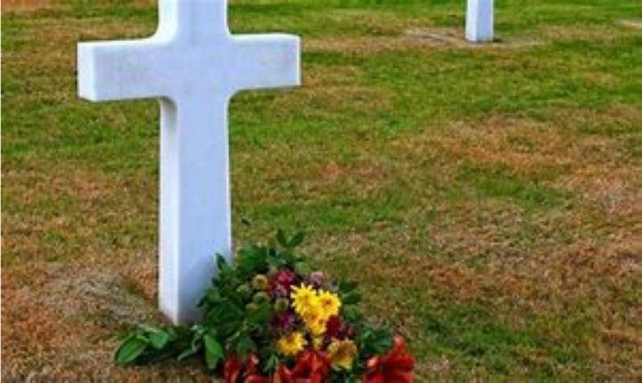 fleurs, paroisse Sainte-Famille de Valcourt